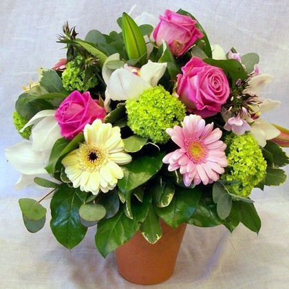 Terracotta Pot Flower Arrangement